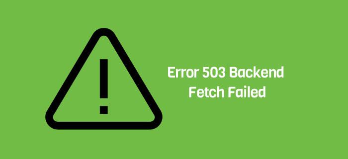 Error 503-Backend Fetch Failed